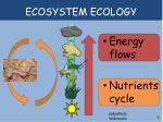 ecosystem ecology1
