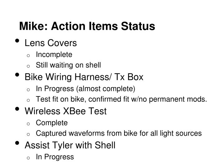 Mike action items status
