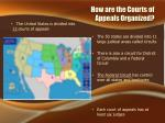 how are the courts of appeals organized