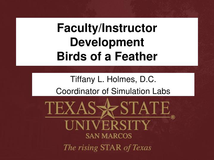 faculty instructor development birds of a feather n.