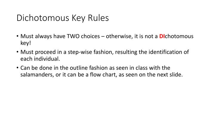 Dichotomous key rules