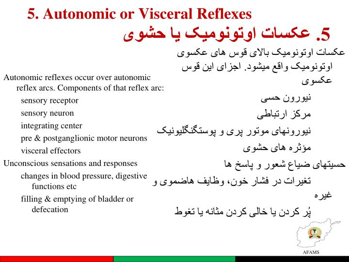 5. Autonomic or Visceral Reflexes