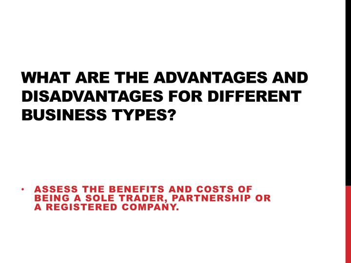 what are the advantages and disadvantages for different business types n.