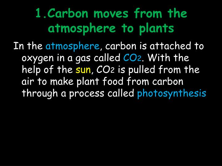 1.Carbon moves from the atmosphere to plants