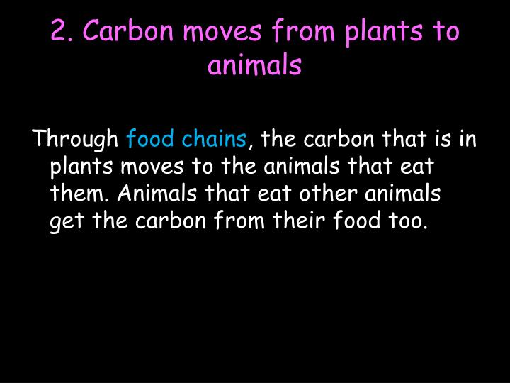 2. Carbon moves from plants to animals