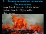 7 burning trees release carbon into the atmosphere