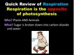 quick review of respiration respiration is the opposite of photosynthesis