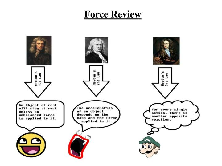 force review n.