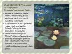 claude monet vesiroosid les nymph as orangerie muuseum pariis