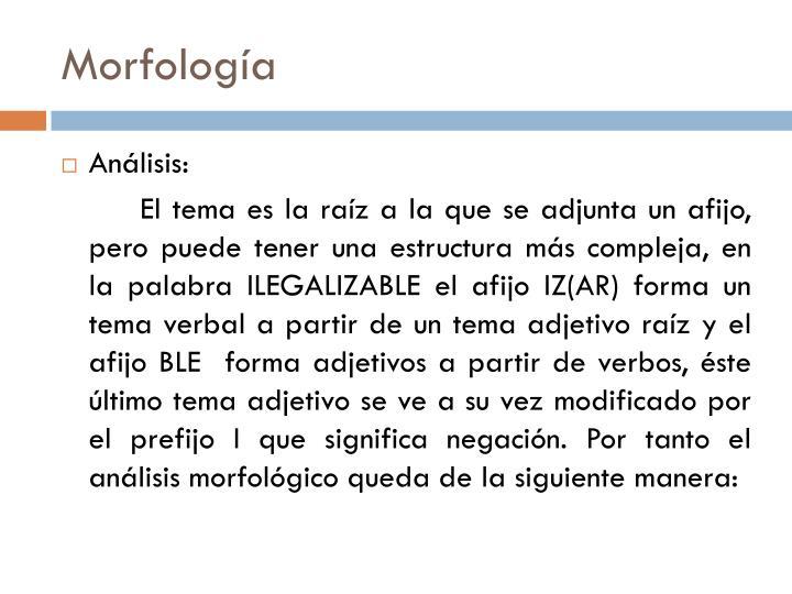 Morfolog a1