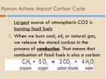 human actions impact carbon cycle