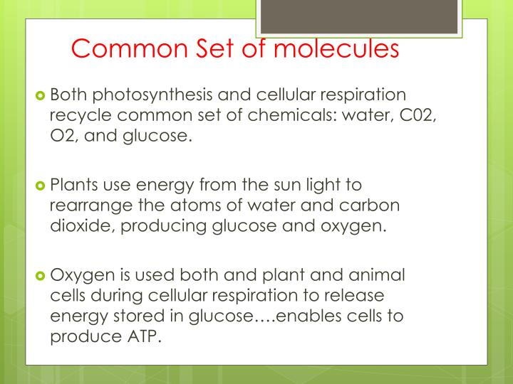 Common Set of molecules