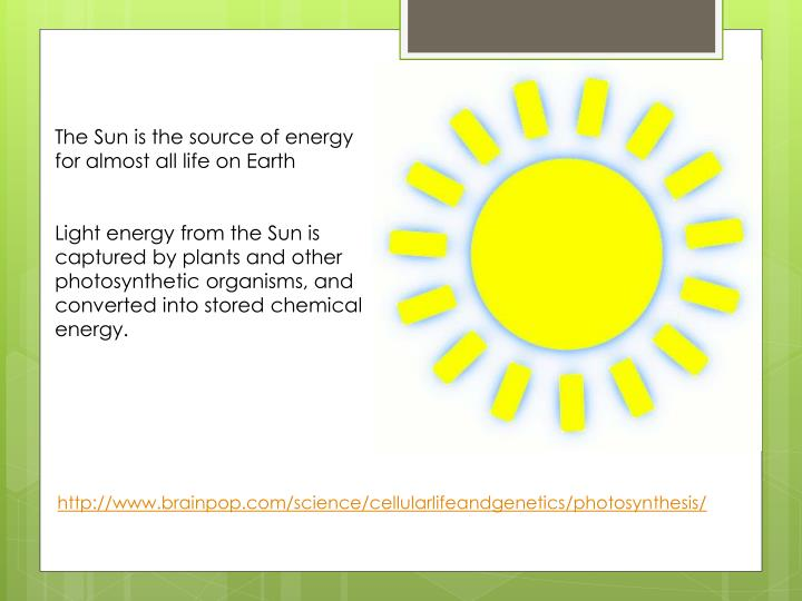 The Sun is the source of energy for almost all life on Earth