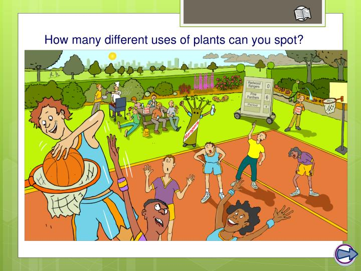 What are plants used for