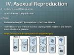 iv asexual reproduction2