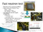 fast neutron test