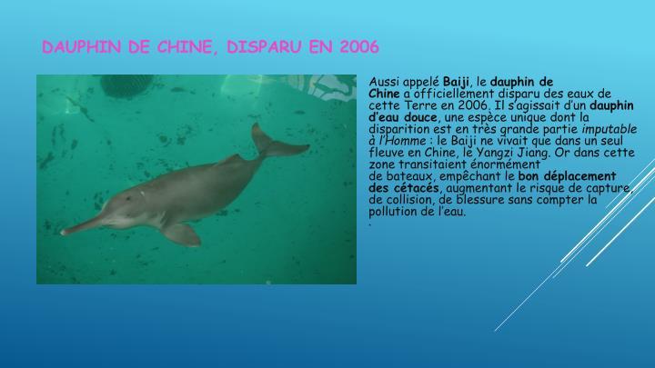 Dauphin de Chine, disparu en 2006