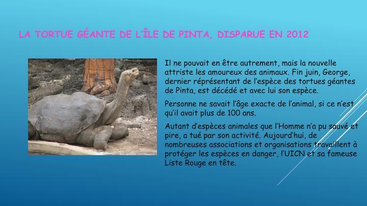 La tortue géante de l'île de Pinta, disparue en 2012