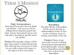 term 3 mission