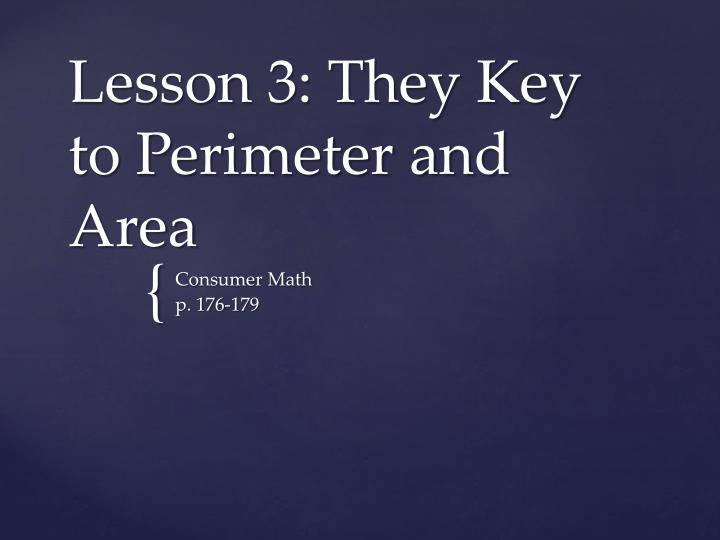 lesson 3 they key to perimeter and area n.