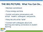 the big picture what you can do