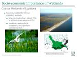 socio economic importance of wetlands5