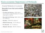 socio economic importance of wetlands6