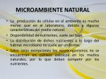 microambiente natural