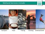 wetland services include