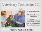 veterinary technicians 101