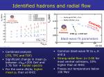 identified hadrons and radial flow