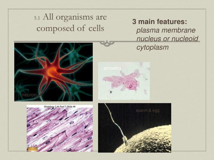 5 1 all organisms are composed of cells n.