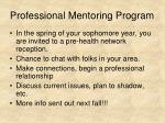 professional mentoring program