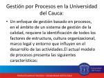 gesti n por procesos en la universidad del cauca