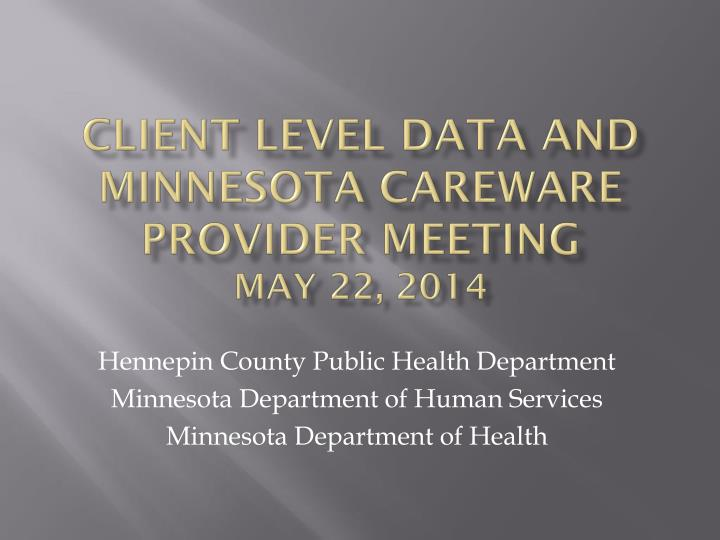 client level data and minnesota careware provider meeting may 22 2014 n.