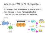 adenosine tri or di phosphate 7 3