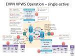 evpn vpws operation single active