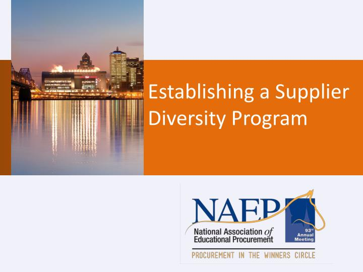 establishing a supplier diversity program n.