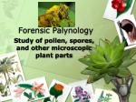 forensic palynology