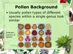 pollen background1