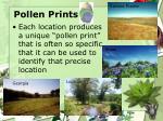 pollen prints