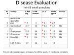 disease evaluation mini small pumpkins