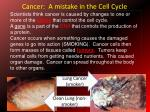 cancer a mistake in the cell cycle