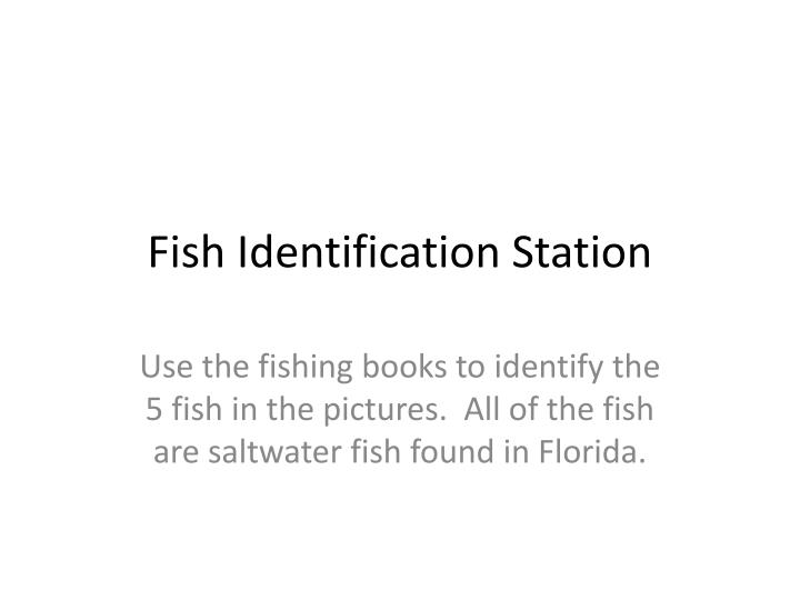 fish identification station n.