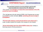 synthesis report recommendations
