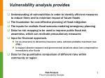 vulnerability analysis provides