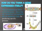 how do you think a gene expresses itself