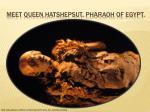 meet queen hatshepsut pharaoh of egypt