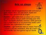 beic un olwyn