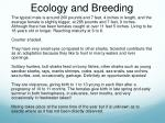 ecology and breeding